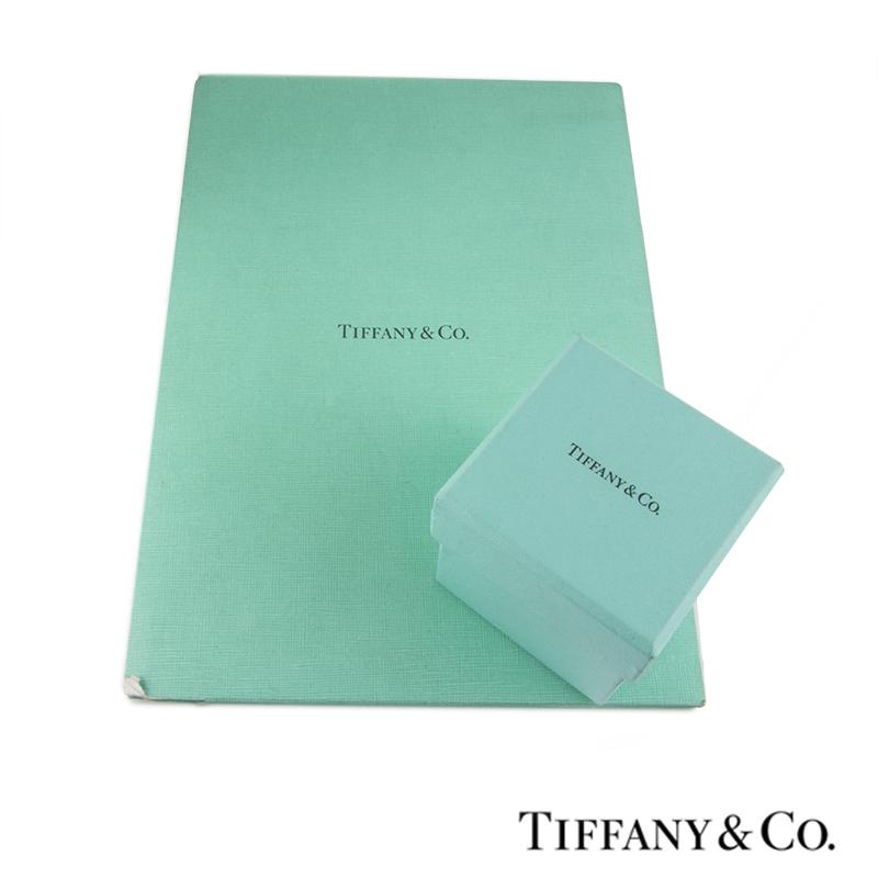 Tiffany & Co. Platinum Diamond Drop Circlet Pendant